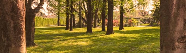 Parco e giochi